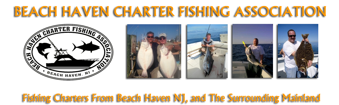 Beach Haven Charter Fishing Assn.